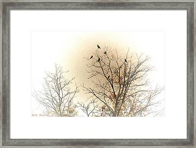 Where To Go From Here... Framed Print