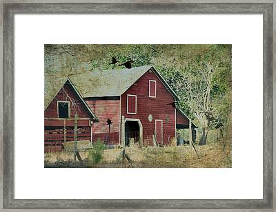Where We Land Framed Print by Jan Amiss Photography