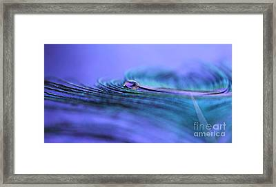 Where Your Journey Takes You Framed Print by Krissy Katsimbras