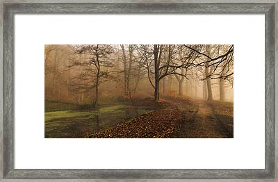 Which Path II Framed Print