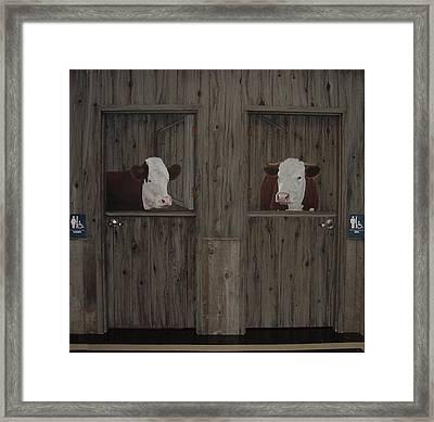 Which Stall Do I Go In Framed Print by Sandra Poirier
