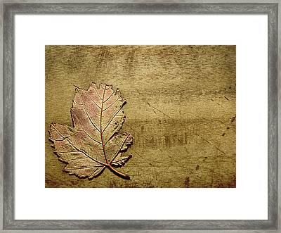 ...while You Fall Apart Framed Print