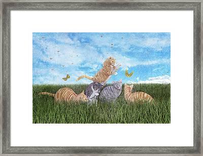 Whimsical Cats Framed Print by Betsy Knapp