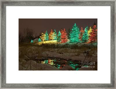 Whimsical Christmas Lights Framed Print by Wayne Moran
