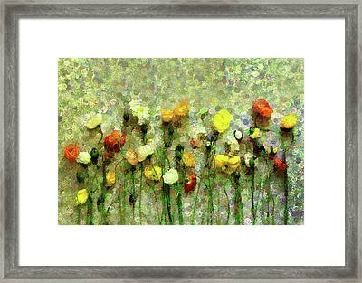 Whimsical Poppies On The Wall Framed Print by Georgiana Romanovna