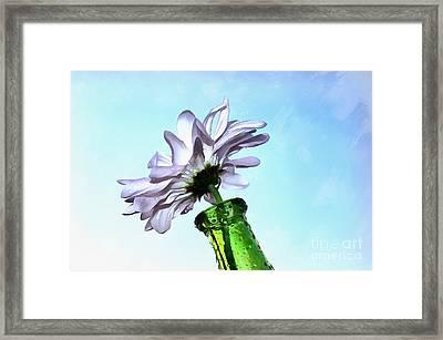 Whimsy Daisy Framed Print by Krissy Katsimbras