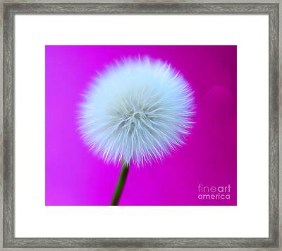 Whimsy Wishes Framed Print by Krissy Katsimbras