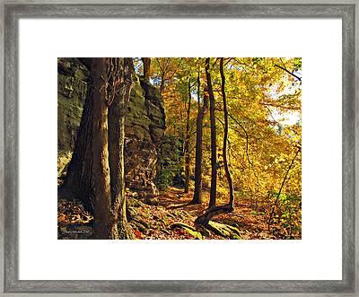 Whipp's Ledges In Autumn Framed Print by Joan  Minchak