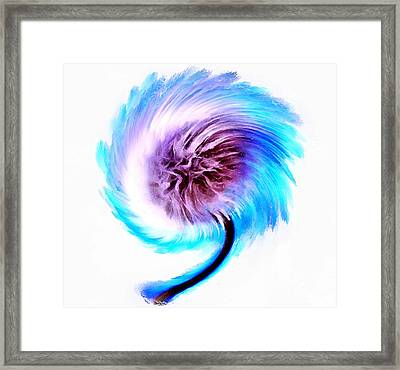 Whirlwind Wishes Framed Print by Krissy Katsimbras