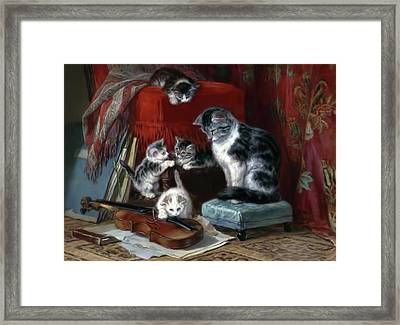 Whiskers And The Violin Framed Print by Georgiana Romanovna