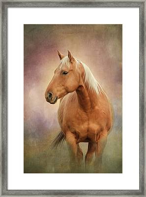 Whiskey Framed Print