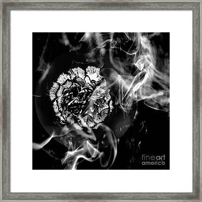 Whisper In The Dark Framed Print
