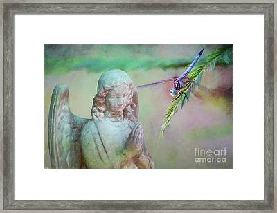 Framed Print featuring the photograph Whisper Of Angel Wings by Bonnie Barry