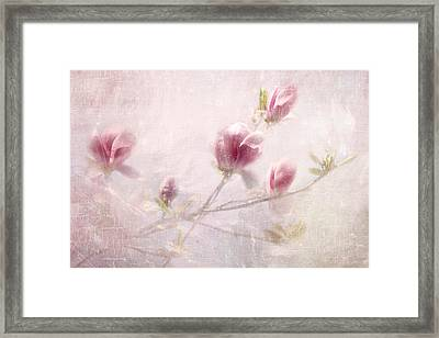 Whisper Of Spring Framed Print