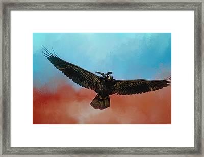 Whisper Of The Eagle Rider Framed Print by Jai Johnson