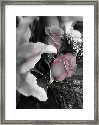 Whisper Framed Print by Sian Lindemann