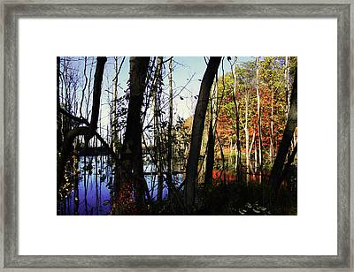 Whisper To Me Framed Print