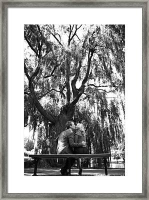 Whisper Willow Framed Print by Andrew Kubica