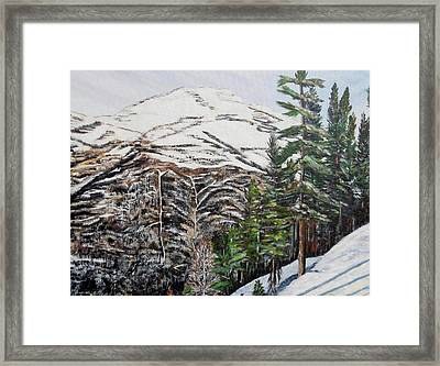 Whispering Pines Framed Print by Marilyn  McNish