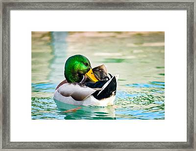 Framed Print featuring the photograph Whispering Secrets by Steven Santamour