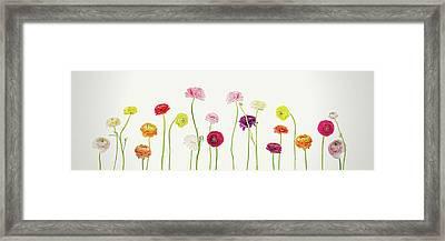 Whispering Spring Framed Print