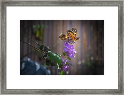 Whispering Wings 2 Framed Print