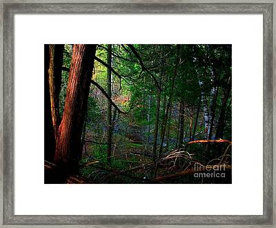 Framed Print featuring the photograph Whisperings by Elfriede Fulda