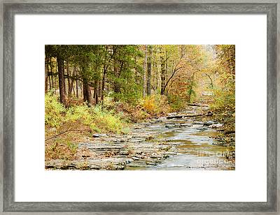 Whispers In The Creek Framed Print by Iris Greenwell