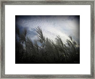 Whispers In The Wind Framed Print by Trina Prenzi