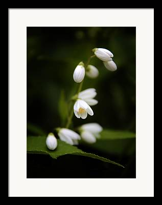 White Tiny Florals Framed Prints