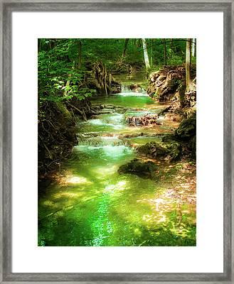 Whispers Of Evergreen Framed Print by Karen Wiles