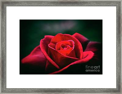 Framed Print featuring the photograph Whispers Of Passion by Linda Lees