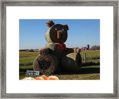 Whistle Bear Harvest Framed Print