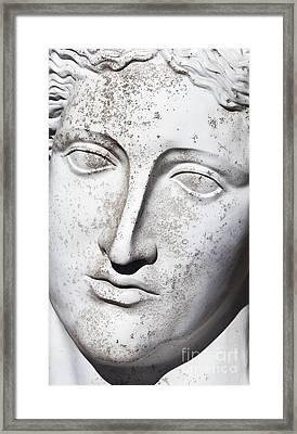 White 1 Framed Print by Elena Nosyreva