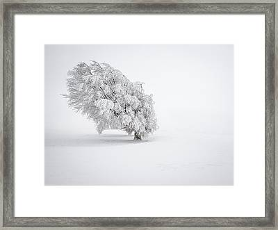 White Framed Print by Andreas Wonisch