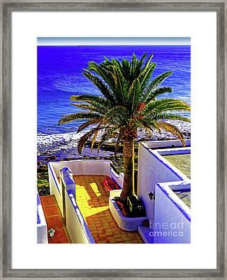 Palmy Sea View Framed Print by Wilf Doyle