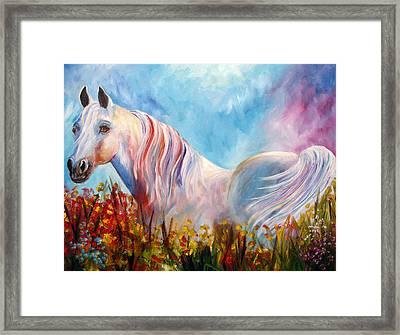 White Arabian Horse Framed Print by Mary Jo Zorad