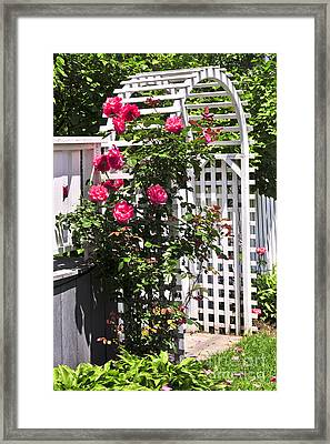 White Arbor In A Garden Framed Print by Elena Elisseeva
