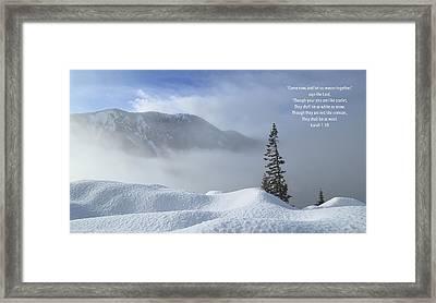 White As Snow Framed Print by Lynn Hopwood