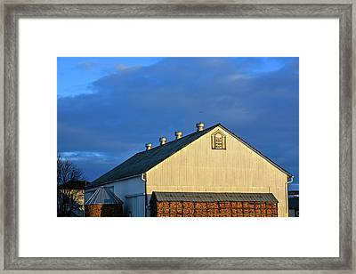 White Barn At Golden Hour Framed Print