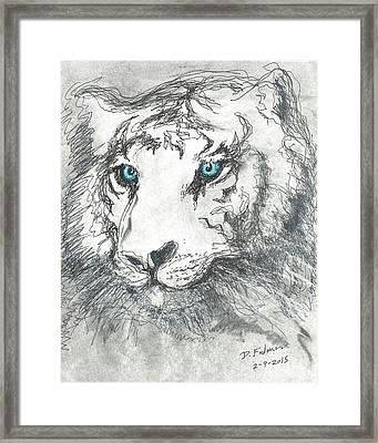 White Bengal Tiger Framed Print by Denise Fulmer