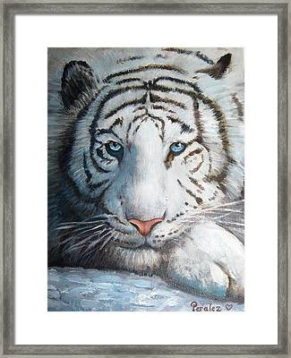 Framed Print featuring the painting White Bengal Tiger by Noe Peralez