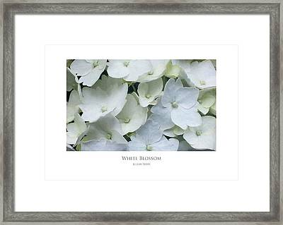 Framed Print featuring the digital art White Blossom by Julian Perry