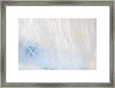 White Blue Water Air Bubbles Framed Print by Arletta Cwalina