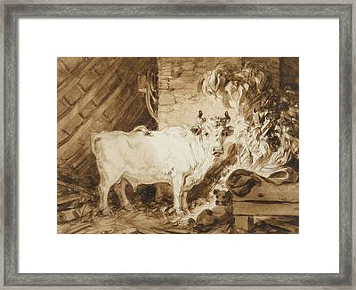 White Bull And A Dog In A Stable Framed Print