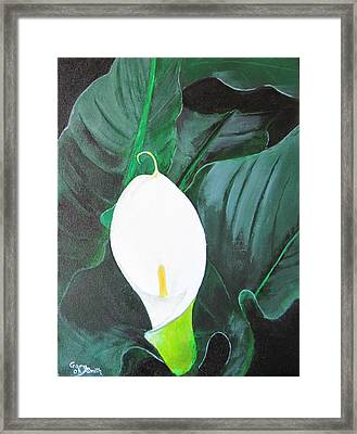 Framed Print featuring the painting White Cala Lily by Gary Smith