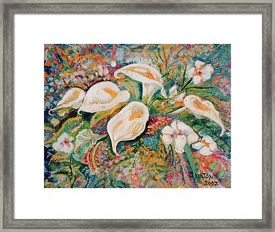 White Callas Framed Print by John Keaton