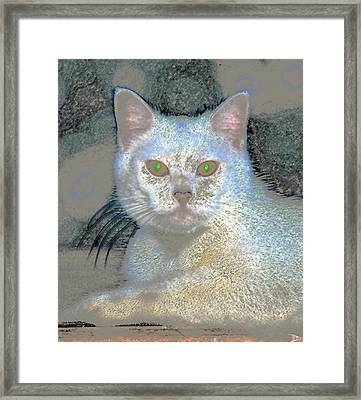 White Cat Green Eyes Framed Print