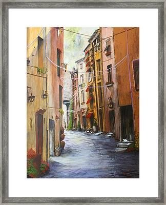 White Cat Lane Framed Print by Jan Lowe