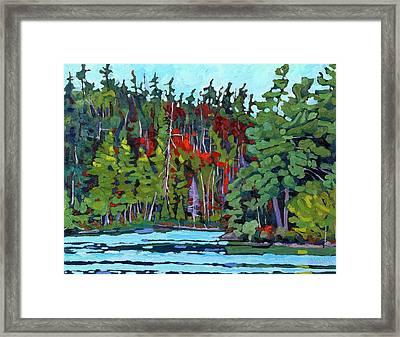 White Cedar Shore Framed Print by Phil Chadwick